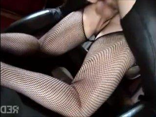 Порно видео: зрелые брюнетки ебутся с пришедшим самцом
